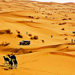 desert cars orange people real UGC travel content photography
